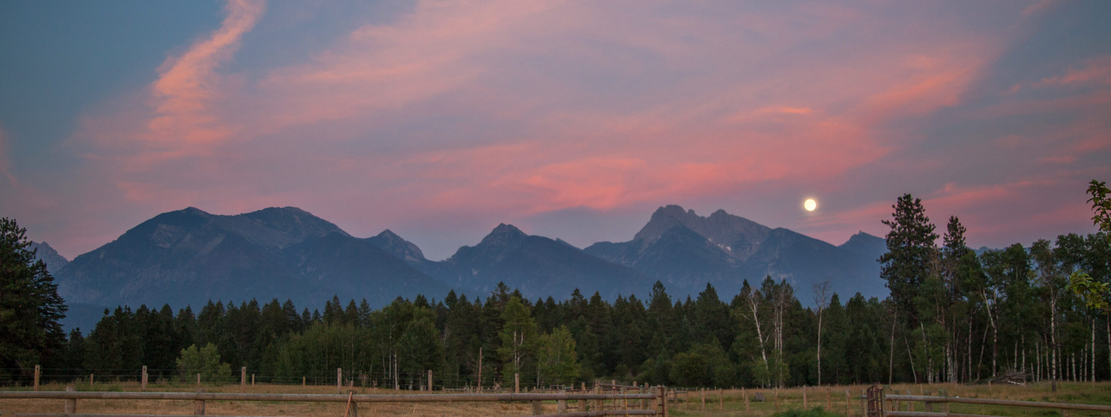 5 Reasons To Have Your Wedding in Western Montana