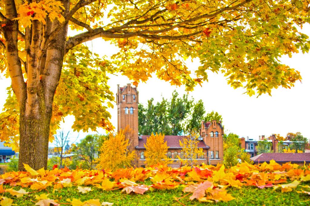 Fall Undeniably Beautiful