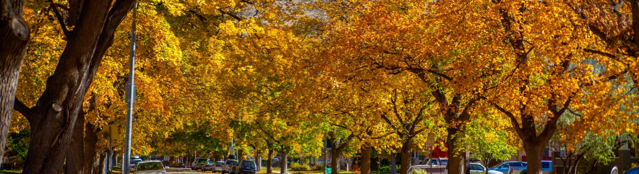 Your Perfect Fall Day In Missoula