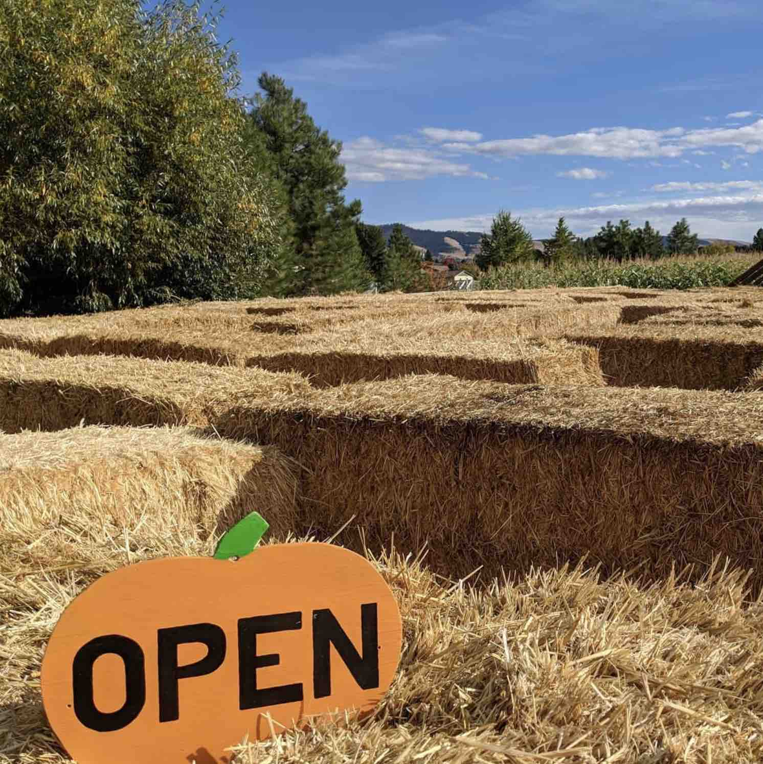 The Missoula Maze in the fall  has a hay maze, corn maze, pumpkin patch and more.