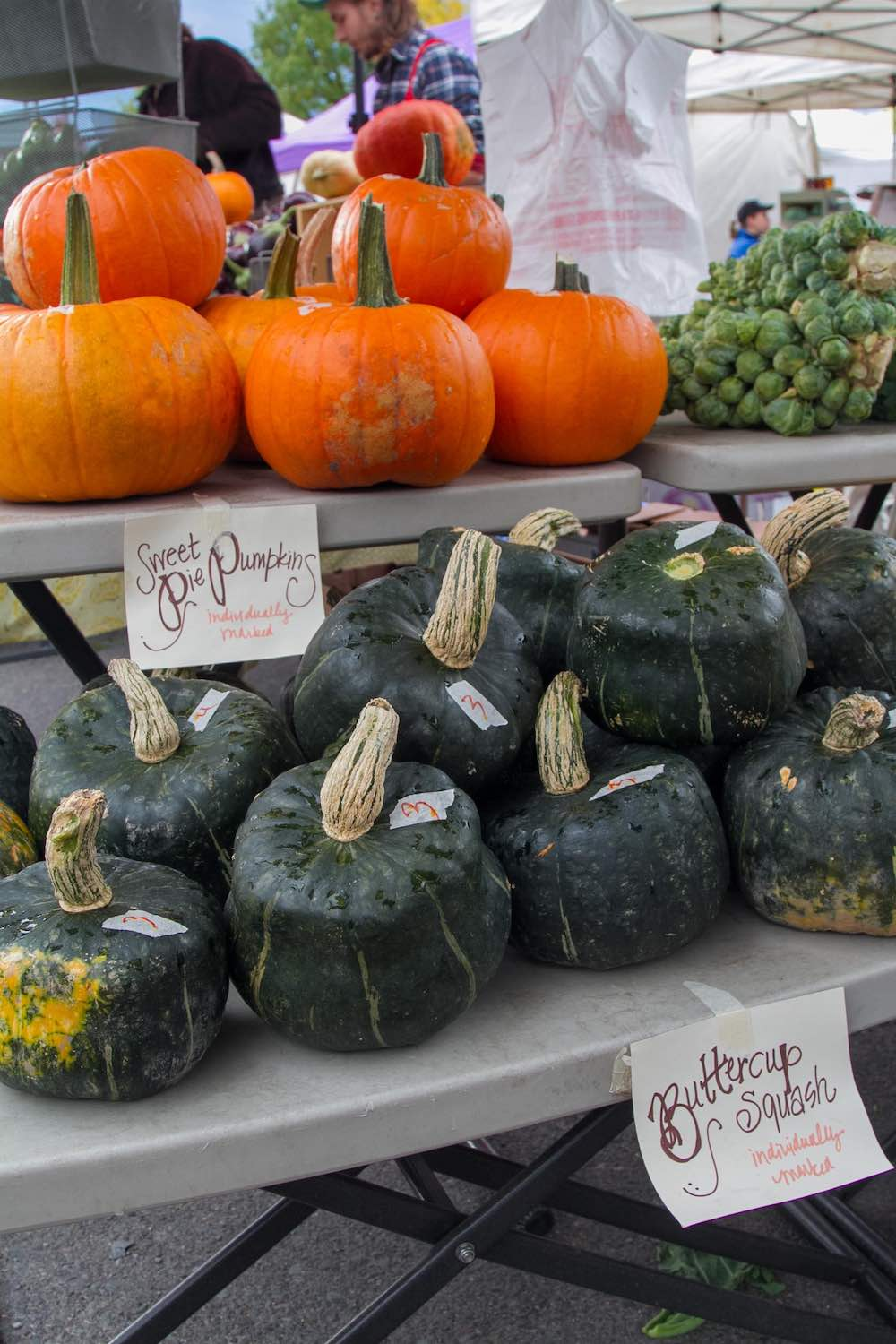 Fall pumpkins and buttercup squash at the Missoula Farmers Markets